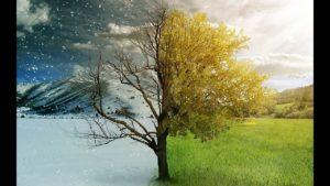 Зима и весна
