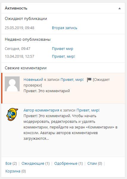 Консоль WordPress - Активность