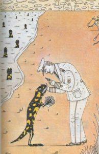 Война с саламандрами