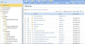 ELMA. Список файлов-папок