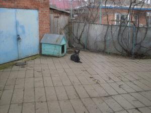 Kris Kaspersky11