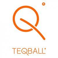 TeqBall Logo
